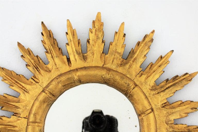Spanish Sunburst Starburst Mirror in Carved Giltwood, 1950s For Sale 2