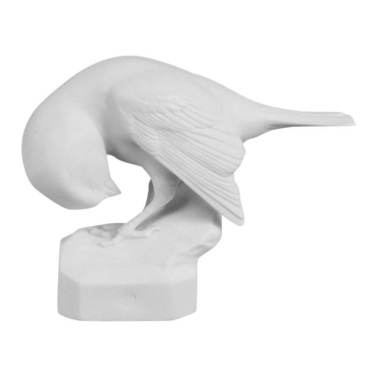 Sparrow Animal Figure in White Biscuit Porcelain by Nymphenburg For Sale