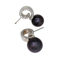 Spiral Post Earring in 14k White Gold with Black Freshwater Pearl & Diamonds