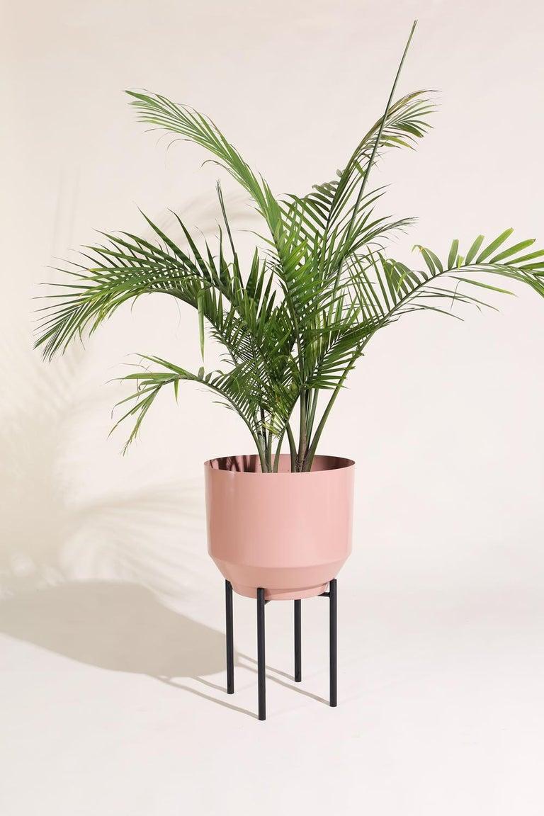 American Spun Planter, Peach For Sale