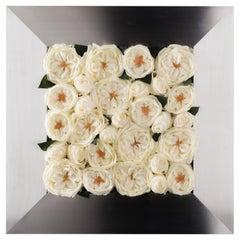 Square Frame Mix Roses Set Arrangement, Flowers, Italy