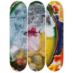 Sri Lanka VI Skateboard Decks After Robert Rauschenberg