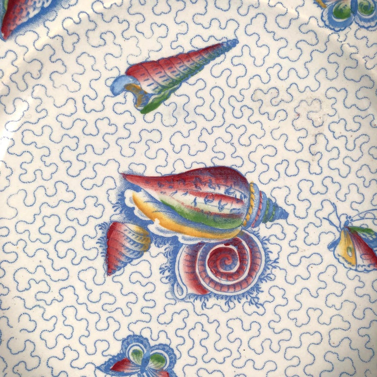An unusual, beautifully decorated Staffordshire octagonal deep plate, white with transfer printed light blue vermicelli pattern background decorated with multicolored transfer printed seashells and butterflies, in green, yellow, burgundy and blue,