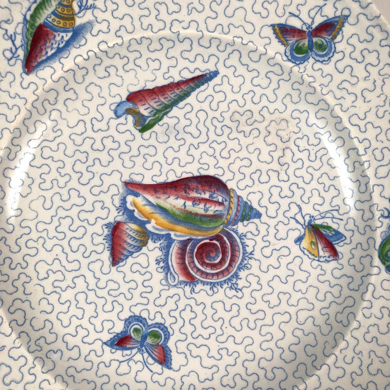 19th Century Staffordshire Sea Shell and Butterfly Plate, circa 1820-1830 For Sale