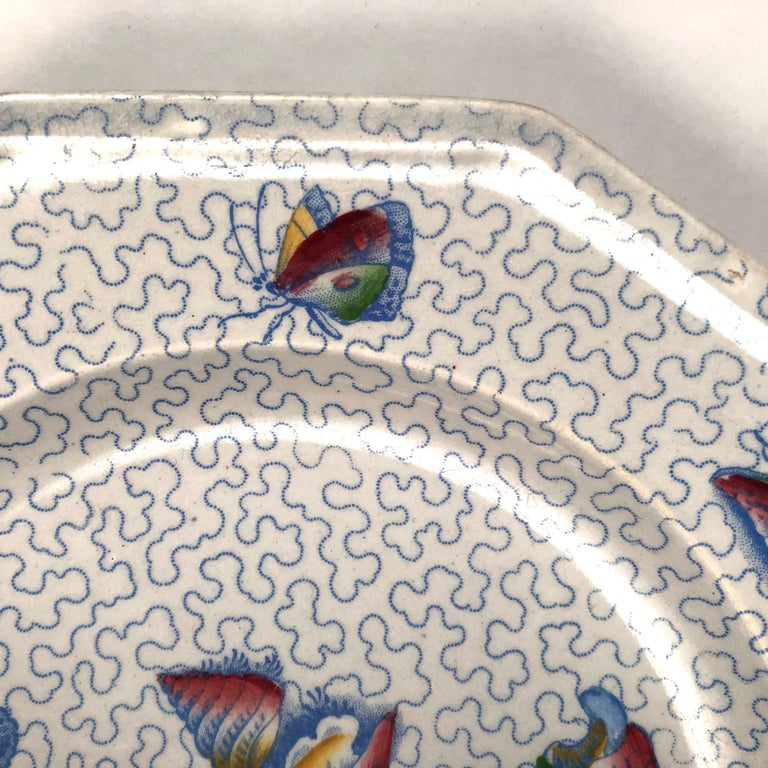 Staffordshire Sea Shell and Butterfly Plate, circa 1820-1830 For Sale 1