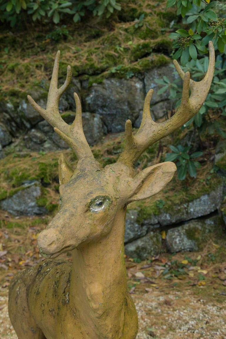 Composed Stone Stag For Sale 1