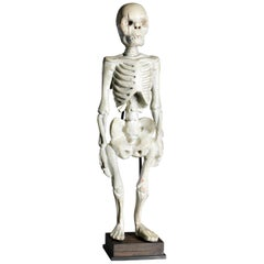 Standing Human Skeleton Sculptured in Wood, South East Asia, 20th Century