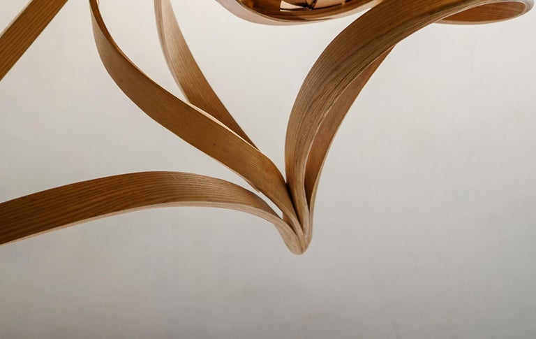 Statement Lighting, Sculptural Bentwood Chandelier by Raka Studio In New Condition For Sale In Cape Girardeau, MO