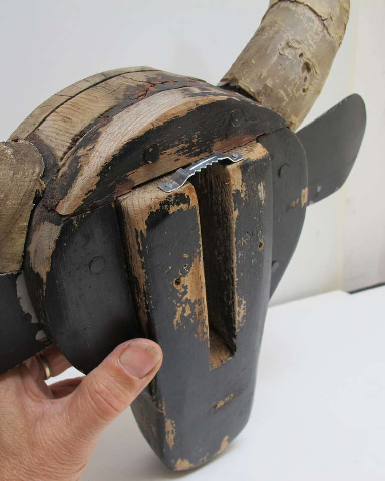 Carved Steer Head Barn Folk Sculpture For Sale