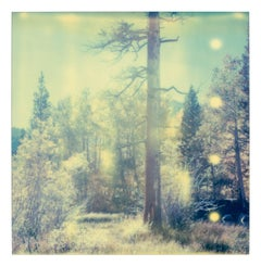 In the Range of Light, Contemporary, Landscape, Polaroid, photograph