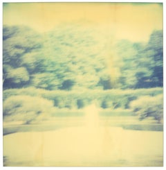 Contemporary, Abstract, Landscape, USA, Polaroid, tree, Schneider, Instantdreams