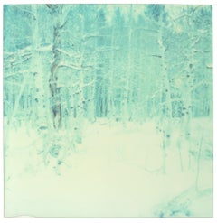 Contemporary, Landscape, expired, Polaroid, Analog, 21st Century, Forest. Snow
