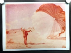 Dandylion Contemporary, Figurative, Landscape, 21stCentury, Polaroid, Expired