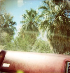 Dashboard Palm Trees (Sidewinder) - Polaroid, 21st Century, Landscape, Color