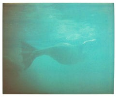 Dugong II - Stay Contemporary, blue, Polaroid, Land, photography, Color