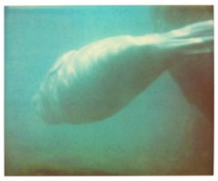Dugong IV - Stay, Contemporary, Polaroid, Color, Coney Island, Animal, Blue
