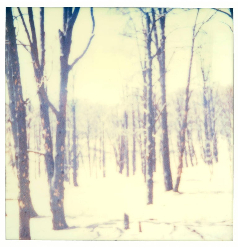 Stefanie Schneider Portrait Photograph - Frozen IV (Last Picture Show)