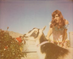 Heather and Zeuss the Goat featuring Heather Megan Christie - Polaroid, Color