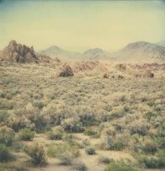 Hidden Valley (Till Death Do Us Part) - Polaroid, 21st Century, Contemporary