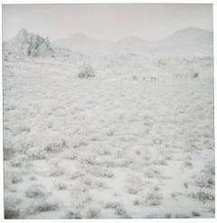 Hidden Valley (Wastelands) - Contemporary, Landscape, Polaroid, 21st Century