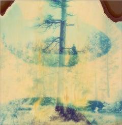 In The Range Of Light II - Contemporary, Landscape, Polaroid, 21st Century