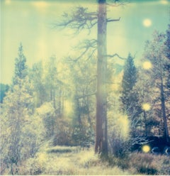 In the Range of Light (Wastelands) - Polaroid, Contemporary, 21st Century, Color