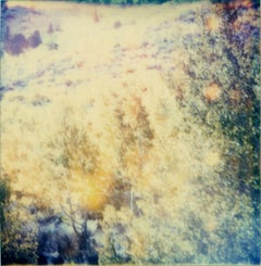 Indian Summer - The Last Picture Show, analog, 58x56cm