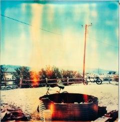 Jack's (Sidewinder) analog, 21st Century, Polaroid, Landscape, Contemporary