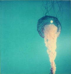 Jelly Fish - Contemporary, Expired, Polaroid, Photograph, Abstract, Color