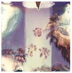 Jimi Hendrix Palm Trees - Contemporary, Landscape, Polaroid, Photograph, Expired