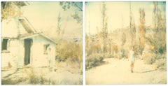 Last Season (Wastelands), diptych, analog