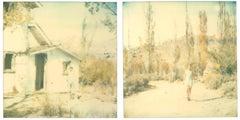 Last Season (Wastelands), diptych - Polaroid, Expired. Contemporary, Color