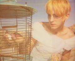 Lullaby - with Heather Megan Christie, Polaroid, Contemporary, Bird