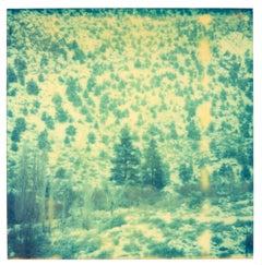 Magic Mountain 1 (Memories of Green) analog, expired, landscape