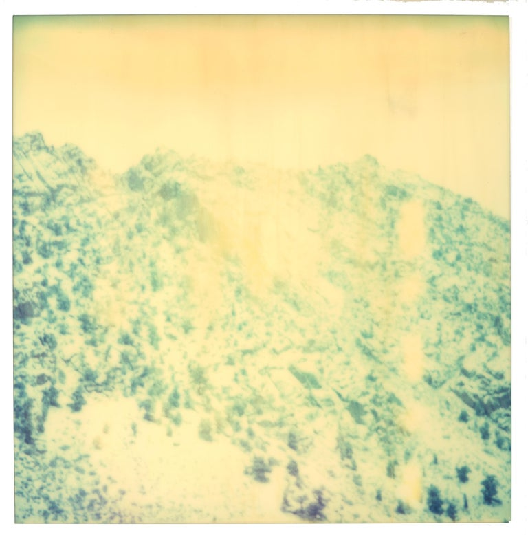 Memories of Green, triptych Edition 2/5, 2003, each 58x56cm, installed with gaps 58x178cm,  analog C-Print, hand-printed by the artist on Fuji Crystal Archive Paper, based on 3 expired Polaroids,  Artist inventory Number 1140.02. Signature label and
