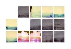 Other Desert Cities (Sidewinder) - Polaroid, 21st Century, Contemporary