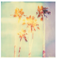 Palm Springs Palm Trees II (Californication) - Polaroid, Contemporary, Color