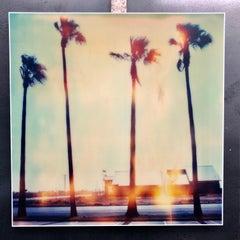 Palm Tree Restaurant, Contemporary, 21st Century, Polaroid, Landscape Photo