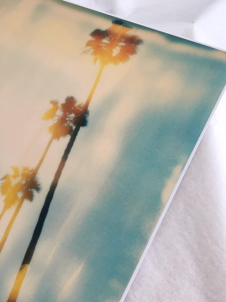 Palm Trees on Wilcox / Contemporary, Polaroid, Photograph, Analog For Sale 3