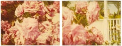Rosegarden #01 (Suburbia), diptych - 21st Century, Contemporary, Color, Polaroid