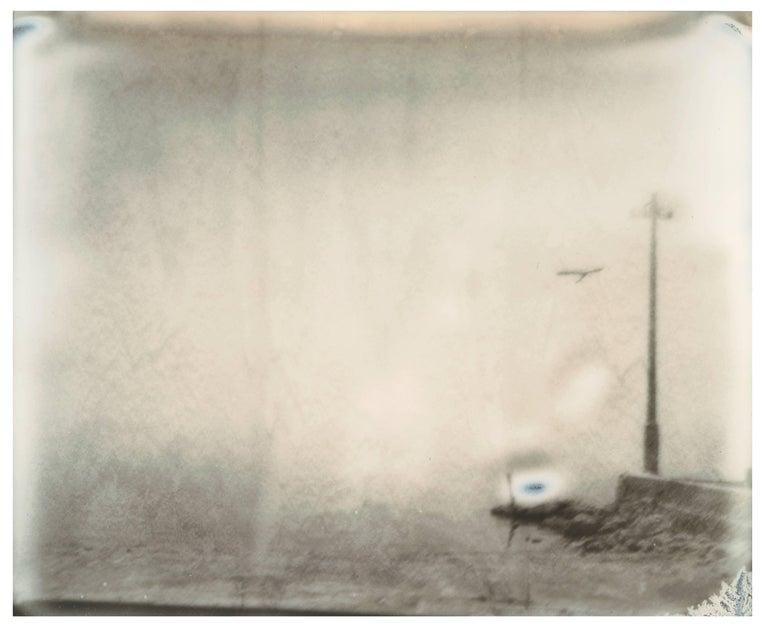 Stefanie Schneider Landscape Photograph - Salton Sea Pelican (California Badlands) - Contemporary, 21st Century, Polaroid