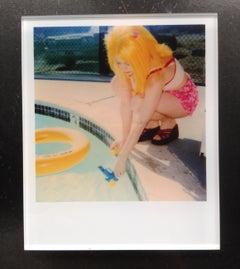 Stefanie Schneider Minis - Max by the Pool (29 Palms, CA)