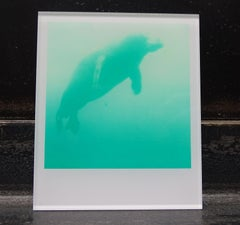 Stefanie Schneider Minis - Skywhale (Stay) - Polaroid, Contemporary, Color
