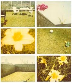 Suburbia, analog, mounted. Polaroid, photograph, 21st Century, landscape,