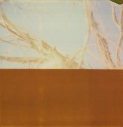 Summer Interlude II (Deconstructivism) - Contemporary, Expired Polaroid