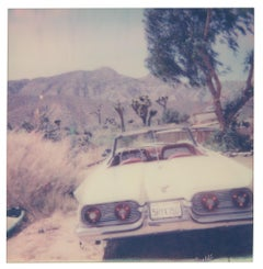 Tao's Place (Stranger than Paradise) - Polaroid, Contemporary, Landscape, Color