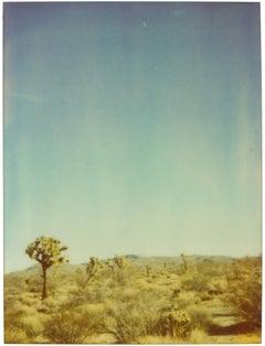 The Moon above Joshua Tree National Park (29 Palms, CA) - analog