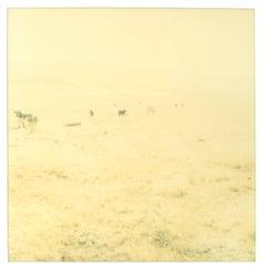 Untitled (Oilfields) Contemporary, 21st Century, Desert, Polaroid, Landscape