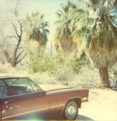 Untitled (Sidewinder), analog - 21st Century, Contemporary, Polaroid, Color