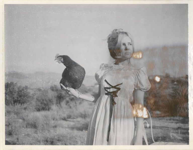 Stefanie Schneider Black and White Photograph - Victorian Falcon - Chicks and Chicks and sometimes Cocks